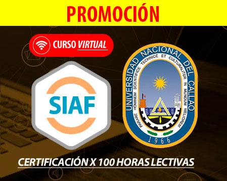 curso virtual SIAF 2016